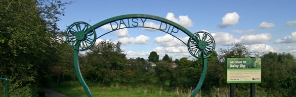 Daisy Dip [image courtesy SCC]
